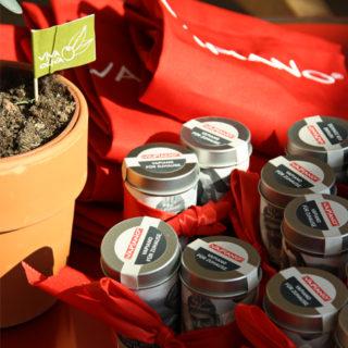 Ein Vormittag bei Vapiano – Bloggerkochen in München